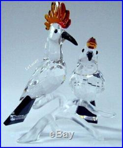 Swarovski Hoopoes, Tropic Bird Crystal Figurine Authentic MIB 925080
