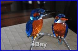 Swarovski Kingfishers 945090 Birds Crystal Figurine GREAT GIFT