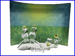 Swarovski Kris Bear Mo Field Flower Crystal Display