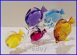 Swarovski Rainbow Fish Family, #5223195, Stunning And Brilliant, Bnib
