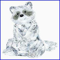 Swarovski Rare Encounters Nature Raccoon Animal White Crystal Figurine 5301563