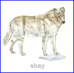 Swarovski SCS Gray Wolf, Gray & Golden Crystal Authentic MIB 5428544