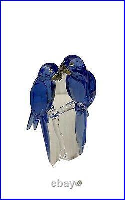Swarovski SCS Hyacinth Macaws 5004730 Annual Edition New In Box