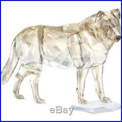 Swarovski Scs 2019 Gray Wolf 5428544 Sofia In Box With Coa New